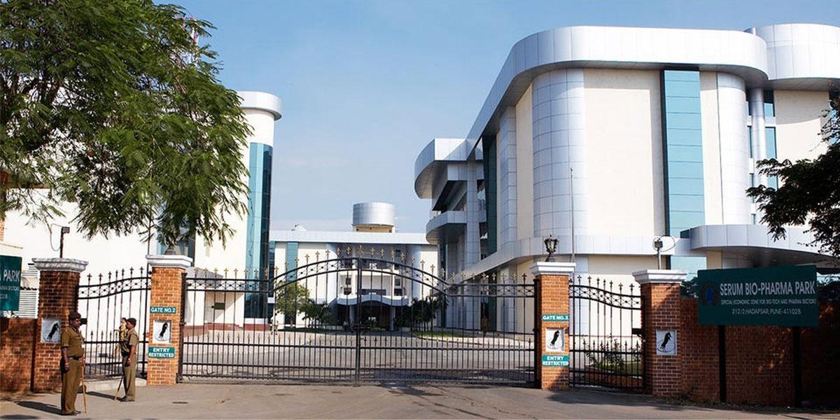 မြင်းမွေးမြူရေးခြံကနေ အစပြုခဲ့တဲ့ ကမ္ဘာ့အကြီးဆုံး ကာကွယ်ဆေးကုမ္ပဏီ Serum Institute